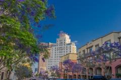 1441 9th Avenue #510 - MLS-006